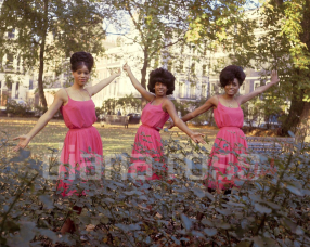 The Supremes in 1964