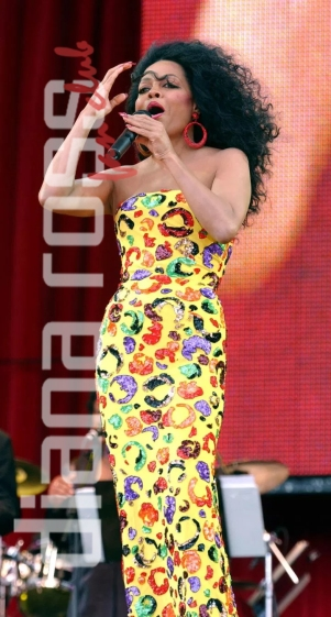 Diana Ross live in Hyde Park in 2002